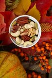 Autumn colorful still life with leaves and nuts royalty free stock image
