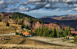 Autumn colorful trees at mountain peak