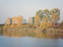 Autumn Colorful Trees Reflecting in de Rivier royalty-vrije stock fotografie