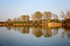 Autumn Colorful Trees Reflecting en rivière photos libres de droits