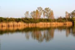 Autumn Colorful Trees Reflecting en rivière photos stock