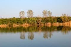 Autumn Colorful Trees Reflecting en rivière photo libre de droits