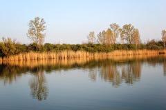 Autumn Colorful Trees Reflecting en rivière images libres de droits