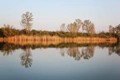 Autumn Colorful Trees Reflecting en rivière image stock