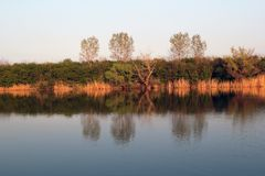 Autumn Colorful Trees Reflecting en rivière tranquille photographie stock libre de droits