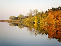 Autumn Colorful Trees Reflecting en rivière tranquille image libre de droits