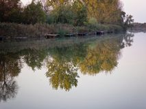 Autumn Colorful Trees Reflecting in Rivier royalty-vrije stock afbeeldingen