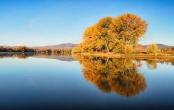 Autumn colorful trees under morning sunlight reflecting in tranq royalty free stock photography