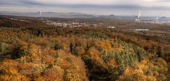 Autumn colorfull forest with factories