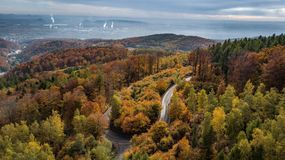 Autumn colorfull forest panorama with a road