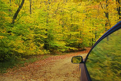 Autumn Colors. Gravel road leading through autumn colors royalty free stock photos