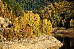 Autumn Colors. Golden Autumn Scene in October Royalty Free Stock Images