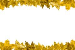 9 autumn colors Στοκ φωτογραφία με δικαίωμα ελεύθερης χρήσης