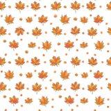 9 autumn colors  απεικόνιση αποθεμάτων