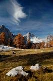 Autumn colors. In mountains, Slovenia Royalty Free Stock Photos