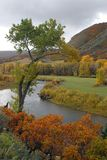 Autumn colors. Colorful colorado in autumn peak Stock Photo