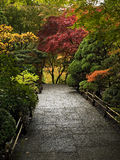 Autumn colors. Walkway among bright autumn-colored trees and shrubs Royalty Free Stock Photography