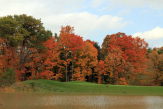 Autumn Colors Fotografia Stock