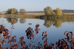 Autumn Colors Royalty-vrije Stock Afbeelding