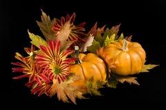 Autumn colors Stock Photos