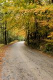 Autumn colors. Mountain road with autumn colors on nature stock images