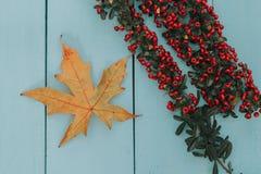 Autumn Colors Lizenzfreie Stockfotos