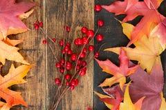 Autumn Colors Stockfoto
