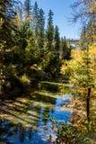 Autumn Colors Fotografia de Stock Royalty Free