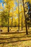 Autumn Colors Imagens de Stock Royalty Free