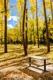 Autumn Colors Foto de Stock Royalty Free