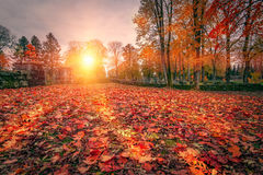 Autumn Colors Foto de archivo libre de regalías