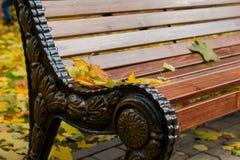 9 autumn colors Στοκ Εικόνες