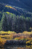 Autumn Colors Above the Beaver Dam Stock Photos
