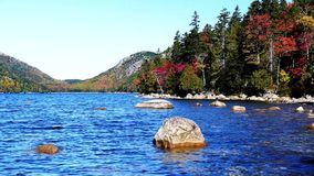 Autumn colors from Acadia National Park stock footage