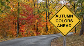 Autumn Colors Ahead photos libres de droits