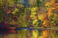 Autumn Colors Along a costa do lago mountain das baías fotografia de stock royalty free