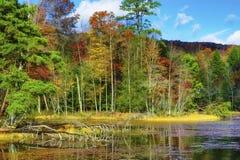Autumn Colors Along la orilla del lago mountain de las bahías imagen de archivo