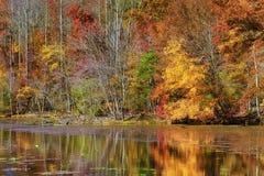 Autumn Colors Along la orilla del lago mountain de las bahías imagen de archivo libre de regalías