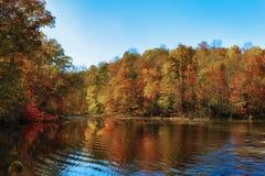Autumn Colors Along le rivage du lac mountain de baies image stock