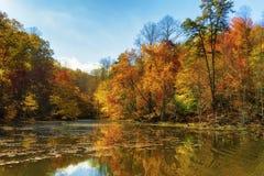 Autumn Colors Along le rivage du lac mountain de baies image libre de droits