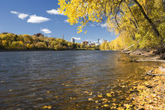 Autumn colors along the Mississippi River, Minneapolis skyline in the distance. royalty free stock images