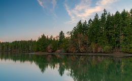 Autumn Colors Along Mud Bay, Washington State, EUA foto de stock