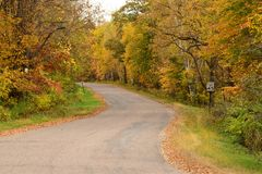 Autumn Colors Along a Rural Road Stock Photography