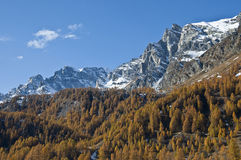 Autumn colors - Alp Devero. Autumn colors and mountain with snow Stock Photo