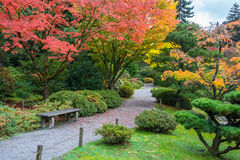 Autumn Colors in Arboretum Park. Fall foliage with park bench and walking path in garden arboretum stock photos