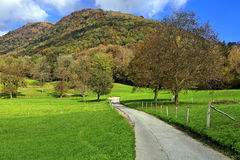 Autumn colors in Arosio, Switzerland. Royalty Free Stock Photos