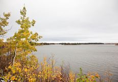 Fall colors at Elk Island. Autumn colors by the Astotin lake at Elk Island Park in Alberta royalty free stock photo