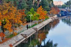 Autumn colors. In the city of Timisoara, Romania - on the banks of Bega River Royalty Free Stock Photography