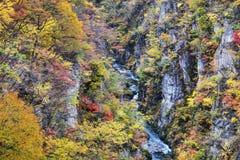 Autumn Colors av Naruko-klyftan i Japan royaltyfri fotografi