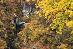 Autumn Colors av Naruko-klyftan i Japan Arkivbild